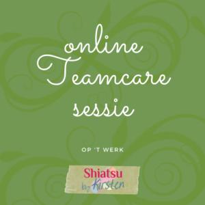 online teamcare sessie